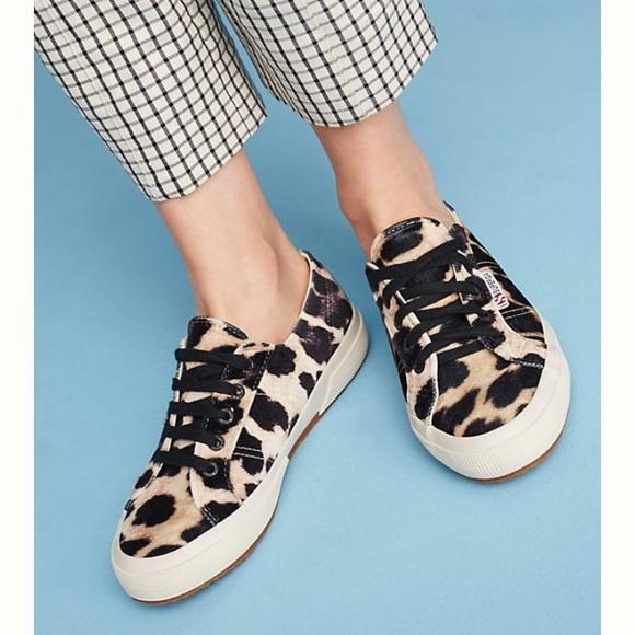 c049e1845325 Superga Shoes | Nib 2750 Velvet Leopard Print W 8 | Poshmark
